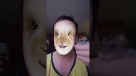 hamster snapchat filter  mralanc nubby youtube
