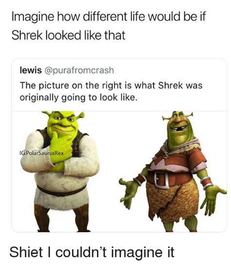 see what you would look like with different color hair imagine how different life would be if shrek looked like