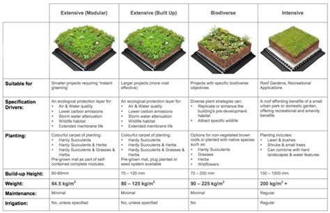 design guidelines green roofs a guide for commercial roofing systems solutions and prices