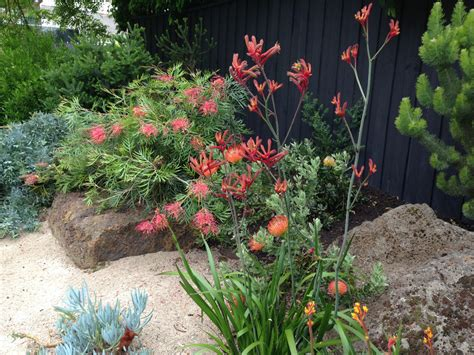 Australian Garden Ideas Australian Garden Ideas 1473