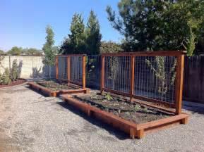 Trellis gardening pinterest