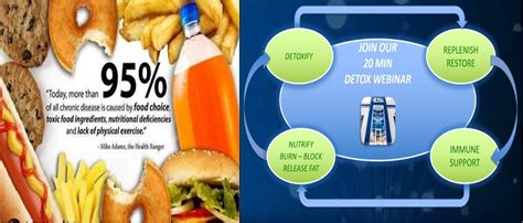4life Detox Tea by Transfer Factor 4life And Targeted Transfer Factors At