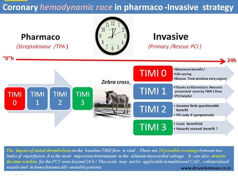 Window Treatment For Door - importance of timi 1 flow in pharmaco invasive