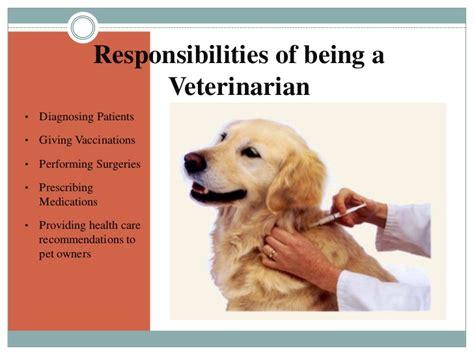 Duties Of A Vet by Megan Quot Being A Veterinarian Quot
