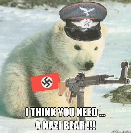 Polar Bear Meme - i think you need a nazi bear bi polar bear