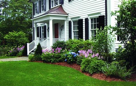 Foundation Planting Basics   This Old House