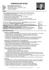 Curriculum Vitae Word Template by 20130408 Cv Merete Ehl