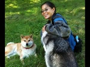 hyper puppy hyperactive dogs how to calm a hyper dog or hyper puppy