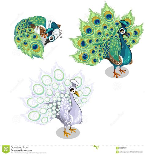 Ohome Decor 3d Two Birds Lu Bulat Patung Catholic Ev Spl2208 illustrations vector stock images 48 pictures to from