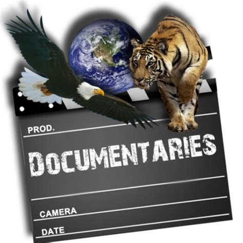 best documentaries top 20 documentaries
