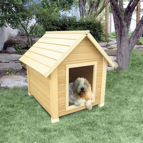 dog in house show your dog some love buy him a warm wooden dog house