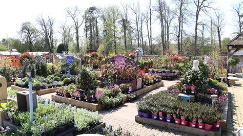 cobham squires garden centres