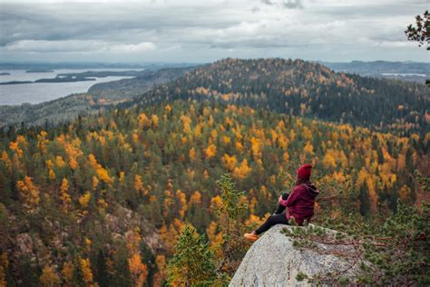 Home Plane by Relax In Koli National Park Finland Tours Stopover Finland