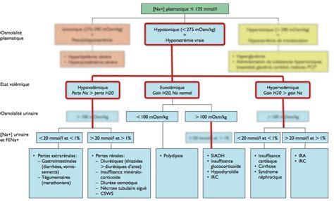 Plan B by Approche Diagnostique De L Hyponatr 233 Mie Nephroblog