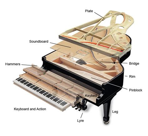 inside a piano diagram piano structure radford piano services