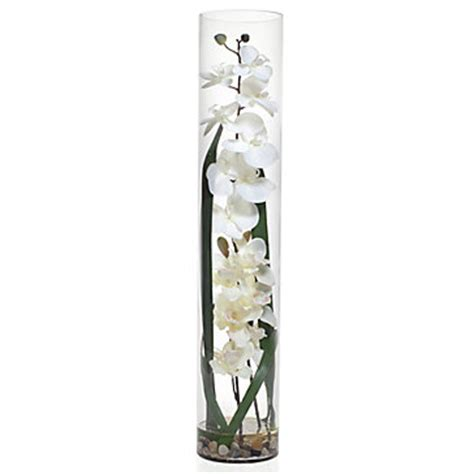 Orchid In Glass Vase by White Orchid In Glass Vase Accessories Z Gallerie