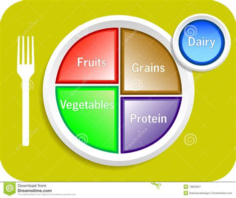 portion template food my plate portions stock vector image of menu course