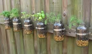 Merveilleux Comment Cultiver La Sauge #5: Faire-pousser-des-plantes-aromatiques-en-interieur-1.jpg