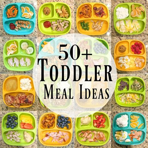 toddler lunch recipes and toddler lunch ideas feed your 50 healthy toddler meal ideas