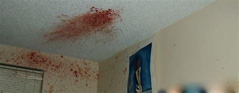 bloodstain pattern analysis case study national intelligence agency inc