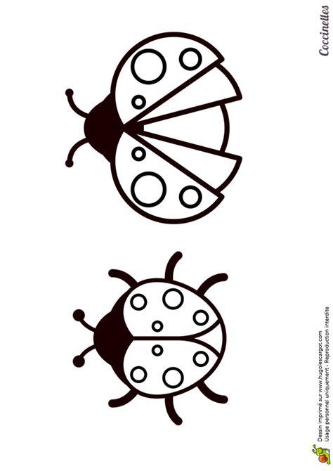 Coloriage De Deux Coccinelles Stylis 233 Es Hugolescargot Com Dessin De Chevaux A Imprimer L