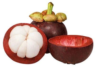 Best Seller Garlic 77 Obat Herbal Kolesterol Alami kulit manggis toko herbal muslim jakarta jual obat grosir distributor suplier agen