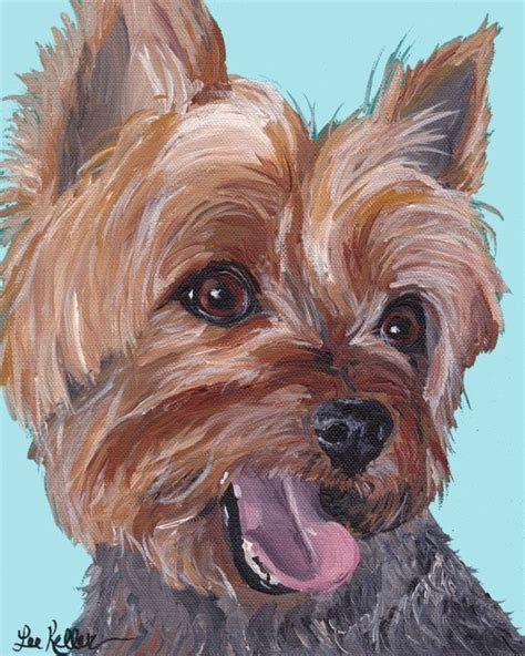 yorkie skin problems treatment 921 best terrier images on animals terriers and yorkies