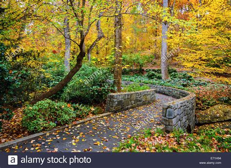 Botanical Garden Athens Ga Fall Trail At Botanical Gardens In Athens Usa Stock Photo Royalty Free Image
