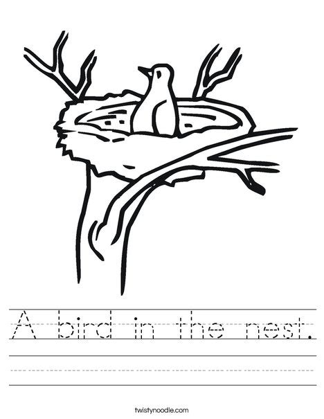 coloring pages of birds nest a bird in the nest worksheet twisty noodle