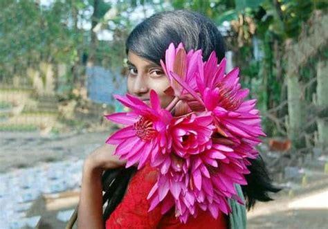 Bibit Bunga Teratai Lotus simbol dan makna bunga teratai bibit