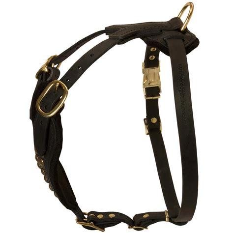 rottweiler walking luxury studded walking leather rottweiler harness rottweiler store