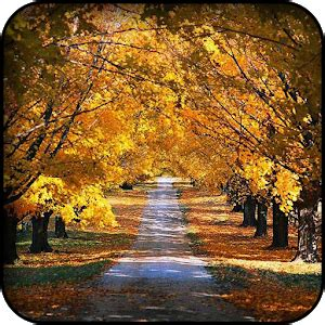app autumn wallpapers apk for kindle fire | download