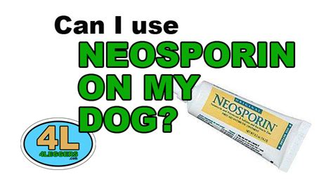 can i use neosporin on my can i use neosporin on my 4leggers