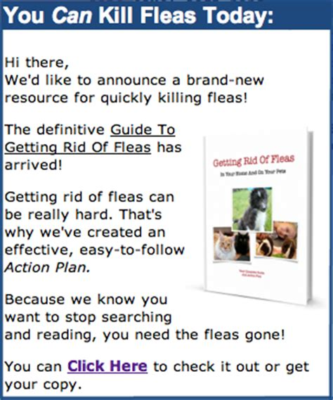 image gallery home remedies fleas