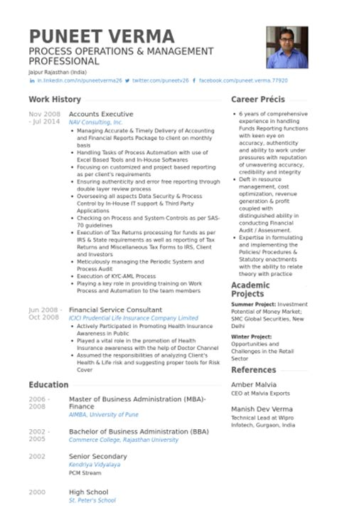 resume format for accountant executive accounts executive resume sles visualcv resume