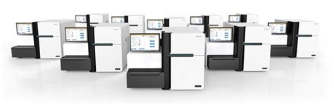 illumina sequencing machine illumina announces 1000 whole human genome sequencing machine