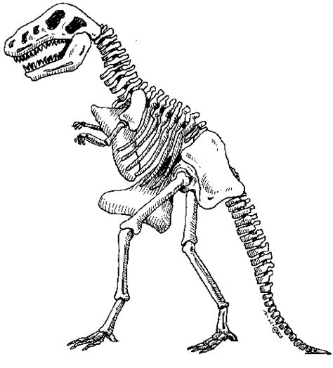 printable dinosaur skeleton pictures journaling ephemera