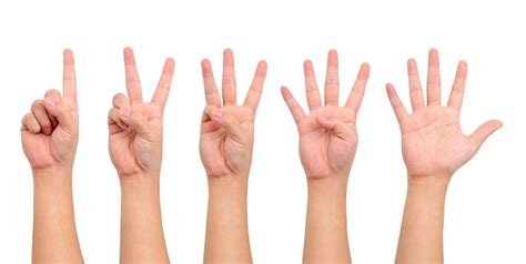 5 Things That Are For You by 指の長さでわかる 人間関係占い 小指と人差し指を見ればタイプが判明 しらべぇ 気になるアレを大調査ニュース