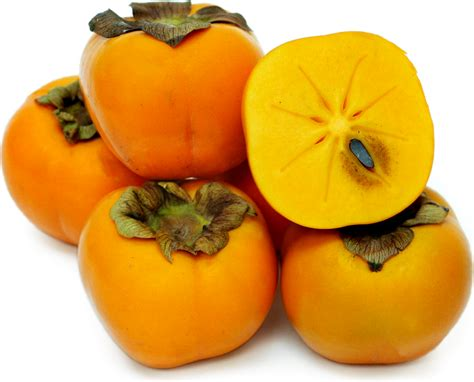 orange colored fruit orange colored fruit names gallery