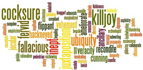 sat vocabulary section should i study sat vocab princeton tutoring blog