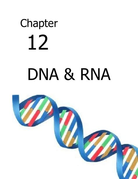 biology chp 12 dna and rna notes