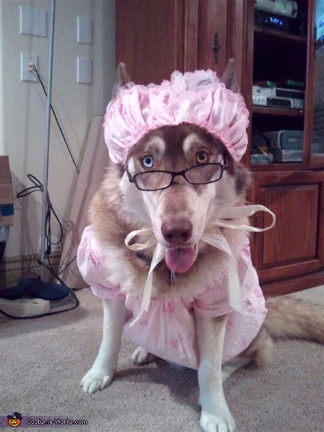 big bad wolf costume idea  dogs