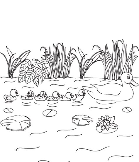 coloring pages the ugly duckling page 4
