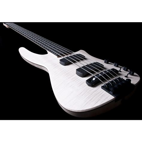 Synchrony Financial Home Design Credit Card by Ns Design Cr5 Radius Electric 5 String Bass In Natural Satin
