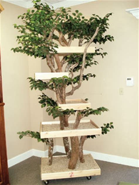 real tree or fake foe cats cat tree that looks like a tree our 5 top picks