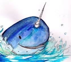 99 best images about narwhals!!!! on pinterest
