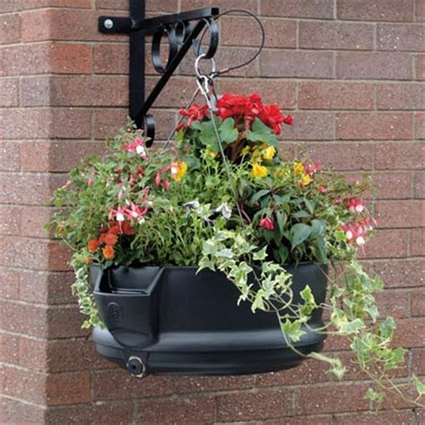 Self Watering Planters Uk by Fullbloom Self Watering Hanging Planters By Glasdon