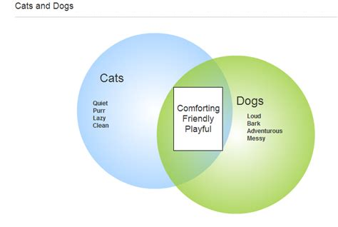 Compare And Contrast Cats And Dogs Essay by Compare And Contrast Cats And Dogs Essay