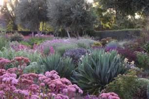 drought resistant plants garden