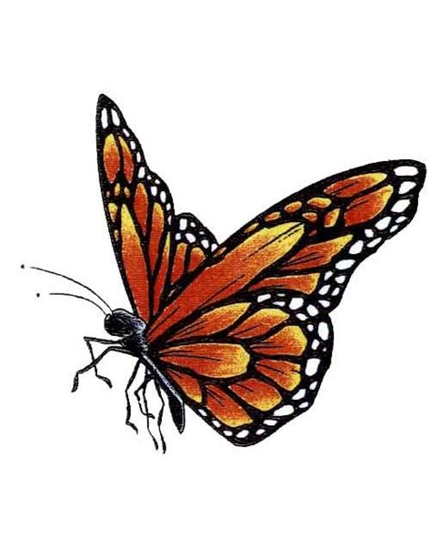 side butterfly tattoo designs 5 monarch butterfly designs